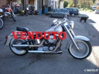 Harley Davidson FAT BOY a CARBURATORE